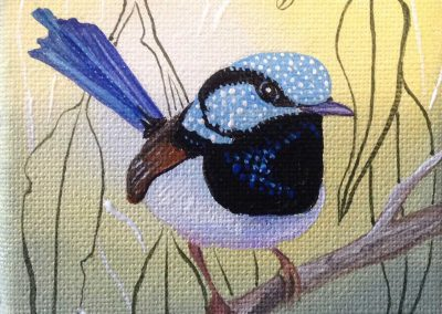 Blue-wren-painting-Patricia-Smart-Artist