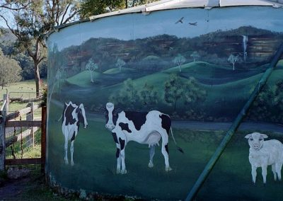 Water tank mural Kangaroo Valley